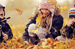 27 сентября: Осенний МультиЧайник